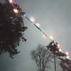 Xmas lights (Andrei Grigorev) Tags: garland lights tree christmas night square mobilography