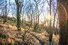 20171228-_DSC6246-2 (DJMads) Tags: cold frosty winter bryneuryn snowdonia carneddau a55 northwales wales welsh unitedkingdom uk osian friends photoshoot light ambient atmospheric hdr lightroom flickr dramatic sun sunlight