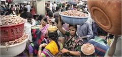 Sassoon Docks (channel packet) Tags: india mumbai sassoon dock fish market porter davidhill