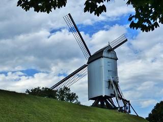 (11) Allemaal Brugge