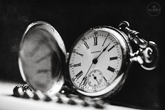 IMG_4744logo (Annie Chartrand) Tags: watch pocketwatch macro jewelry waltham time monochrome bw black white chain number dial face hands