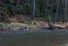 IMG_0082 (Le Radiophare) Tags: czech republic vsemly ceska kamenice srbska forest autum january intercamp ferdinanda