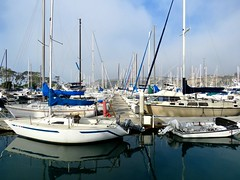 """""""A ship is safe in harbor but that's not what ships are for."""" (Bennilover) Tags: sailing sailboats sail docked moored marina danapoint california ocean sea pacific"""