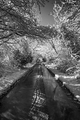 Old London Road in the Snow Black & White (Monochrome)