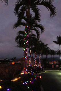 Christmas Eve - Kona Sea Ridge