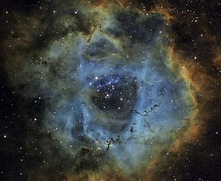 C49 - Rosette Nebula - Tricolor Narrowband - 2012-12-22