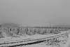 Vignes enneigées (zuhmha) Tags: bulgarie bulgaria winter hiver snow landscape horizon paysage line brouillard lignes mogilovo