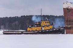 Edward H (dan mackey) Tags: heritagemarine tugboat icebreaking americanvictory superior wisconsin superiorwisconsin algomacentralmarine oglebaynorton middletown americansteamship