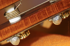 Tuning up for the New Year! (Elisafox22 slowly catching up ;o)) Tags: elisafox22 sony ilca77m2 100mmf28 macro macrolens telemacro redux hmm macromondays guitar wood neck metal strings tuning light dof indoors elisaliddell©2018