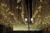 IMGP1361 (PahaKoz) Tags: москва улица фонарь фонари центр иллюминация гирлянда гирлянды вечер ночь город moscow cityscape city street lantern illumination электричество electric garland christmaslight night nighttime nightography evening even eventide