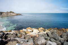 2017-AugSep-California-103 (4x4Foto) Tags: california loverspoint montereybay pacificgrove pacificocean aquarium beautiful beauty centralcoast cypress flowers nature plants redwoods rocks seagulls seals seaside sunset trees villages water virginia unitedstates