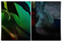 truth of shadows and leaves (kazimierz.pietruszewski) Tags: diptych abstract abstractform digipaint 21 digitalart composition form border