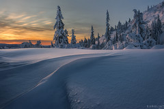 Wrinkled (Ron Jansen - EyeSeeLight Photography) Tags: kongsberg buskerud norway winter sunrise snow cold trees wrinkle blanket rays light warm wrinkles blue orange