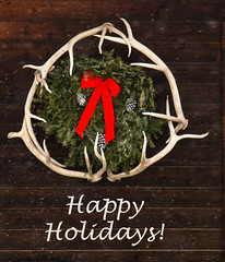 Happy Holidays (Kim Tashjian) Tags: christmas holiday shedhorns wreath montana