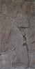 325Neo Assyrian reliefs, Palace at Nimrud (queulat00) Tags: pergamonmuseum berlin germany alemania museum museo museodepérgamo deutschland neoassyrianreliefs palaceatnimrud relieveneoasirio palacioennimrud nimrud assyrian asiria