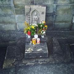 jizo offerings (troutfactory) Tags: 大阪府 関西 日本 osaka kansai japan asuszenfone3 digital 地蔵様 jizo statue offering