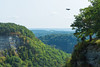 Bald Eagle Flying Over Gorge (Mike Ver Sprill - Milky Way Mike) Tags: hawk eagle bald letchworth state park upstate new york travel explore green landscape nature fall foliage autumn colors gorge ravine flying bird fly animal