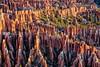 Bryce Detail (Wizum) Tags: bryce brycecanyon brycecanyonnationalpark utah hiking landscape nature hdr photomatix texture 2017