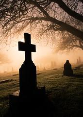 Rise 'n Shine (Prestidigitizer) Tags: cemeteriesnsculptures sunrisesunset vancouver sigma18250mmf3563dcmacro pentaxk3 grave graveyard tombstone tree fog foggy newwestminster frasercemetery cross