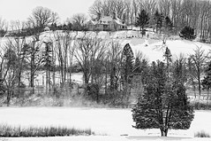 Winter Whites (brev99) Tags: winter wintry d90 sigma1770os ononesoftware on1photoraw2018 topazdetail silverefex landscape snowscape snow trees hill house pond