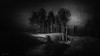 A Place Where to Listen to the Wind Blowing (Gianmario Masala [inworld]) Tags: photoshop blur blurry mono monochrome landscape north gianmariomasala blackandwhite motion dark darkness grain trees bokeh highandlowkey shadows waves stars snow wind sky night