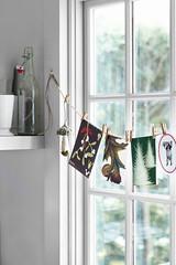 Christmas Card Window Garland (Heath & the B.L.T. boys) Tags: christmas window garland clothespin mushroom toadstool twine fungus ornaments