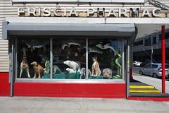 Mermaid Avenue (Blinking Charlie) Tags: storefront stuffedanimals coneyisland brooklyn newyorkcity nyc newyork mermaidavenue frisciapharmacy sonydscrx100m3 blinkingcharlie oversizeplushtoys 2017