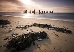 Essex Shoeburyness (daveknight1946) Tags: essex shoeburyness gunnerspark seaweed piers shells seashells southend river thames riverthames greatphotographers