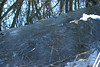Icebound (JuliSonne) Tags: ice icebound catch frozen icecover winter
