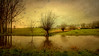 "George Bernard Shaw  ""I enjoy convalescence. It is the part that makes the illness worth while."" ―George Bernard Shaw (genevieve van doren) Tags: damme flanders westvlaanderen willows saules landscape paysage water eau reflection reverberation"