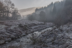 The Winter's Tale (Andrew G Robertson) Tags: winter frost mist morning wales brecon beacons national park stream forest cold
