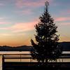 merry christmas ! (ewaldmario) Tags: christbaum pörtschach sonnenuntergang wörthersee xmas christmas weihnachten chrtistmas tree illuminated sunset romantic ewaldmario christmastree
