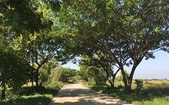 Myanmar, Yangon Region, Eastern District, Dagon Myothit Township, Lay Daung Kan Village Tract (Die Welt, wie ich sie vorfand) Tags: myanmar burma landscape bicycle cycling yangonregion yangon rangoon yangoncity easterndistrict dagonmyothit laydaungkan kocmo singlespeed