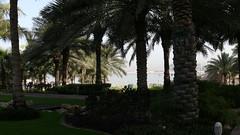 P1030159 (Hello Baton Rouge) Tags: dubai unitedarabemirates urban urbanlandscape placeofinterest beach hotel accommodationviews accommodationgrounds