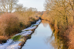 Canal at Cathiron Warwickshire 28th December 2017 (boddle (Steve Hart)) Tags: autumn boddle canon coventry hart kingdom natural nature seasons spring steve steven summer united weather wild wildlife wilds winter wyken canal cathiron warwickshire 28th december 2017 bruce wyke road kingdon england great britain 5d mk4 6d dji spark djispark bird birds flowers flower fungii fungus insect insects spiders butterfly moth butterflies moths creepy crawley unitedkingdom gb