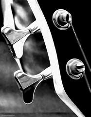 bajo (ojoadicto) Tags: bajo bass detail detalle macro clayijero blackandwhite blancoynegro artisticphotography