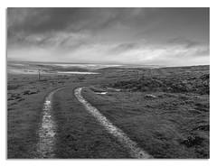 The way home. (johnhjic) Tags: mood mud johnhjic track grass moor sun light cloud clouds wind rain weather water power lines line leading hasselblad x1d heather