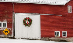 wreath on barn door (keidong) Tags: barn wreath cowsign knox ny albanycounty red dairyfarm