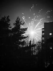 a flash between the trees (Mister.Marken) Tags: larsboda madeinsweden filipstadsbacken firework monochrome blackandwhite