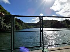 Wailua River State Park - Fern Grotto (87) (pensivelaw1) Tags: hawaii kauai wailuariverstatepark ferngrotto
