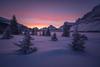 Fresh Start (Darren Umbsaar) Tags: banff forest trees tree snow snowy mountain mountains mount bow lake water frozen ice