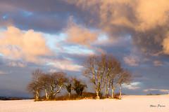 Fin de jour en Gavot (MarKus Fotos) Tags: chablais canon clouds cloud ciel alpes alps arbre larringes gavot couleurs campagne hautesavoie auvergnerhonealpes neige hiver winter woods