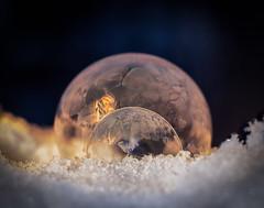 Double Bubbles (bcaldwellphoto.com) Tags: soap soapbubbles bubbles macro macrophotography winter extensiontubes niftyfifty canon7dmark2 canon cold magmod yongnuo ynex14c