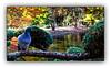 Ballade automnale (Autumn walk) 5 (Jean-Louis DUMAS) Tags: automne autumn feuilles arbre tree colors color couleur paysage landscape parc dxo one ombres lumières explore eau bois lac rivière forêt inexplore oiseau pigeon