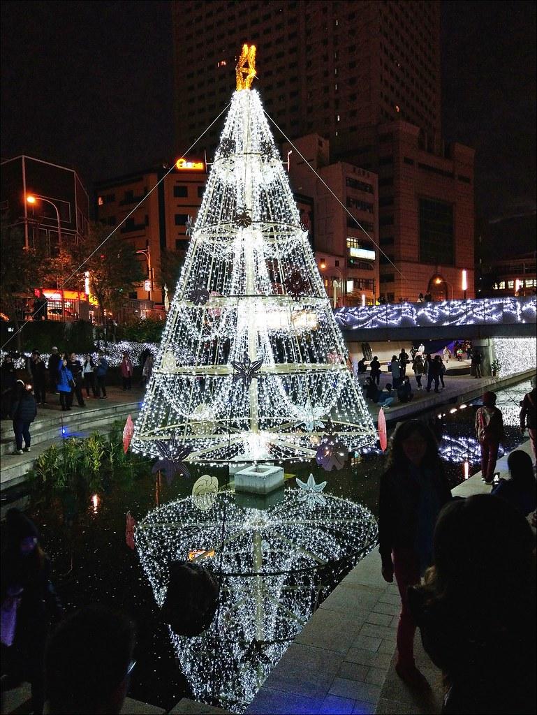 水中聖誕樹
