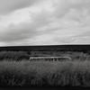 Bus, Eastern Oregon (austin granger) Tags: bus palouse washington roadside evidence decay time impermanence grass field wheat crop rural farm square film gf670 winter