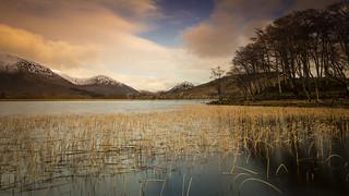 Evening at Loch Awe