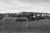 Striped field (swedeshutter) Tags: g80 1240 olympus panasonic lumix g85 g81 football soccar goals stripes grass field clouds sky woods house net