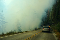 Prescribed fire operation at Glacier Point Road - Yosemite National Park (SomePhotosTakenByMe) Tags: auto car baum tree fire feuer feuerwehr firedepartment ontheroad usa america amerika unitedstates california kalifornien outdoor yosemite nationalpark glacierpointroad rauch smoke yellowline