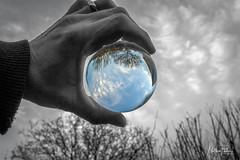 The Garden Sky (mattpacker1978) Tags: lensball camera colour color canon canon700d canondigital canonphotography life 24105 blackandwhite blacks sphere circle hand sky clouds garden winter fun playing bored trees fingers wedding ring world earth